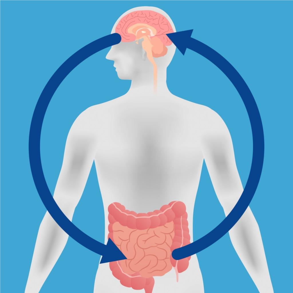 intestino_cerebro_colon_irritable